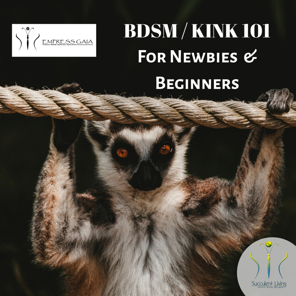 Lemur hanging from a rope with text saying BDSM Kink 101 for newbies and beginners